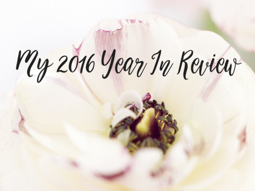 My 2016 Year In Review