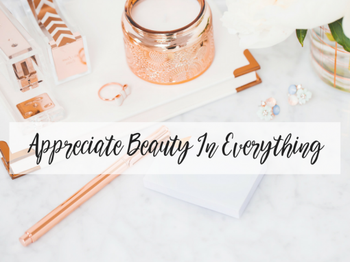 Appreciating Beauty In Everything