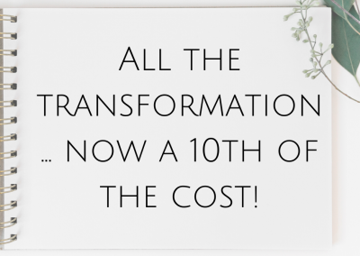 All the transformation… now a 10th of the cost!