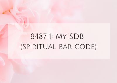 848711: My SDB (spiritual bar code)